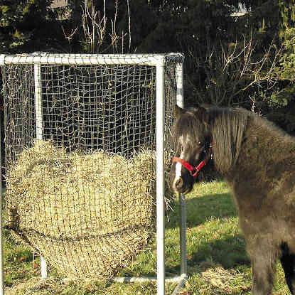 Heuraufe für Pferde mit Heunetz